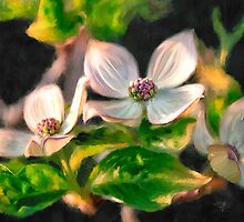 Dogwood Blossoms On A Branch by Lois  Bryan