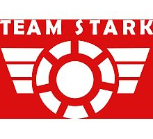 team stark Photographic Print