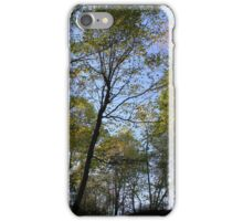trees from below iPhone Case/Skin