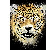 Tiger - Paint Splatters Dubs - Grunge Distressed Design Photographic Print
