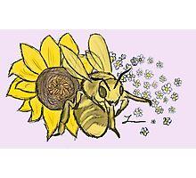 Honey Bee - Willow Photographic Print