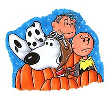 1snoopy and charlie brown Photographic Print