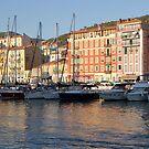 Nice harbor by annalisa bianchetti