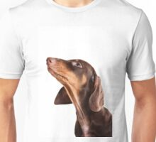 Cute little dachshund puppy dog Unisex T-Shirt