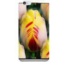 Multiple Tulips iPhone Case/Skin