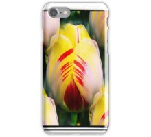 Multiple Tulips iPhone Case/Skin