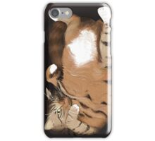 Cat in a Box II iPhone Case/Skin