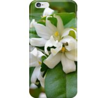Macro on small beautiful white flowers on green leaves. iPhone Case/Skin