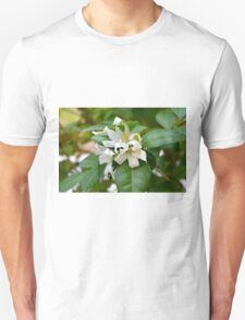 Macro on small beautiful white flowers on green leaves. Unisex T-Shirt