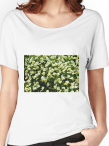 Many small beautiful yellow white flowers in the park. Women's Relaxed Fit T-Shirt