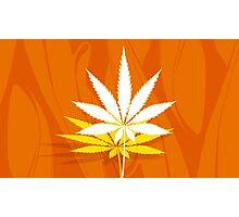 Marijuana and Cannabis Leaf Illustration Photographic Print