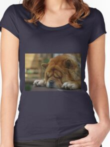 Dog's leisure time Women's Fitted Scoop T-Shirt