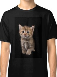 Charming fluffy ginger kitten on a black background Classic T-Shirt