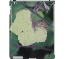 Campbell Valley Leaf iPad Case/Skin