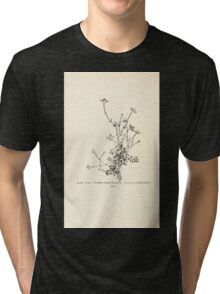 Southern wild flowers and trees together with shrubs vines Alice Lounsberry 1901 156 Thyme Leaved Bluets Tri-blend T-Shirt