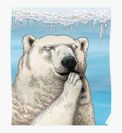 Polar prayer Poster