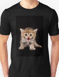 Charming fluffy ginger kitten on a black background Unisex T-Shirt