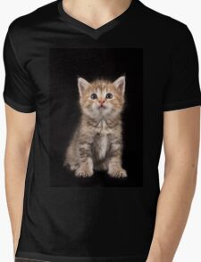 Charming fluffy ginger kitten on a black background Mens V-Neck T-Shirt