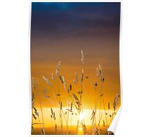 beautiful sunset over the ballybunion coast Poster
