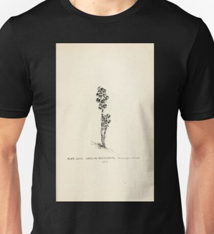 Southern wild flowers and trees together with shrubs vines Alice Lounsberry 1901 118 Carolina Beech Drops Unisex T-Shirt