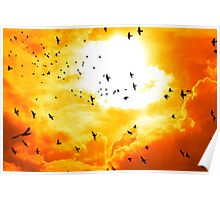 birds flying into a bright orange sunset Poster