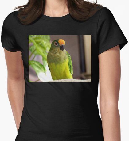 Dancing Delta - Peach-Fronted Conure Womens Fitted T-Shirt