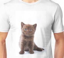 Charming fluffy kitten British cat Unisex T-Shirt