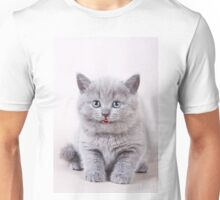 Charming fluffy kitten British cat Unisex T-Shirt