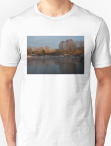 Gray and Amber - an Early Winter Morning on the Lake Shore Unisex T-Shirt