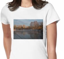 Gray and Amber - an Early Winter Morning on the Lake Shore Womens Fitted T-Shirt