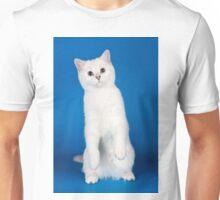 Charming cute white fluffy kitten cat Unisex T-Shirt
