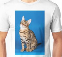 Charming cute red fluffy kitten Abyssinian cat Unisex T-Shirt