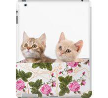 Charming fluffy red kitten British cat iPad Case/Skin