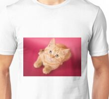 Charming fluffy red kitten British cat Unisex T-Shirt