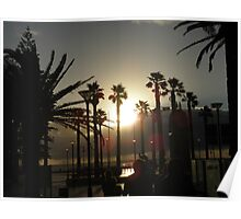 Sunset Through The Palms Poster