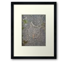 Holly Skeleton Leaf Framed Print