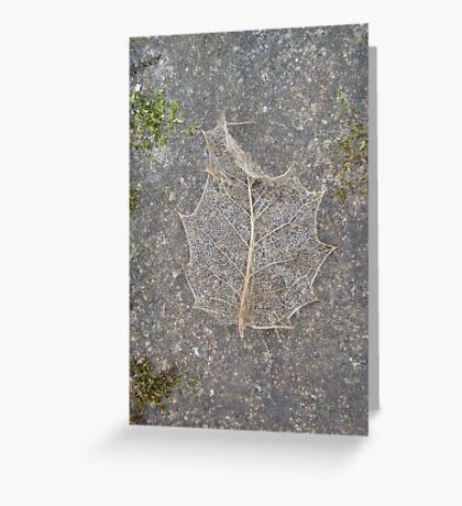 Holly Skeleton Leaf Greeting Card