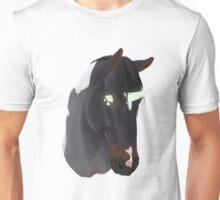 Unicorn Pinto Unisex T-Shirt