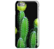 Cactus Flowers iPhone Case/Skin