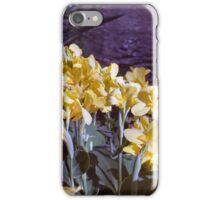 Longwood Gardens - Spring Series 3 iPhone Case/Skin