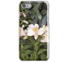 Longwood Gardens - Spring Series 2 iPhone Case/Skin