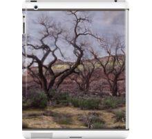Painted Cottonwood Mindscape iPad Case/Skin