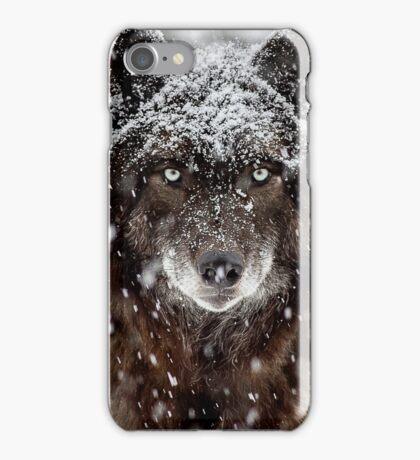 Wolfs Gaze in Snow iPhone Case/Skin