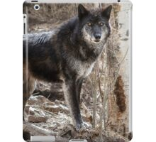 From a distance iPad Case/Skin