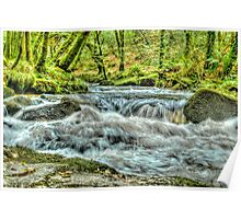 The Golitha Falls HDR Poster