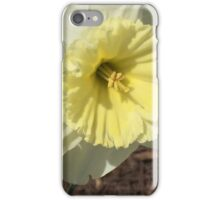 Spring Doubles If you like, please purchase, try a cell phone cover thanks iPhone Case/Skin