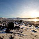 Iceland VI by Debbie Ashe