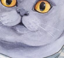 British Cat Sticker