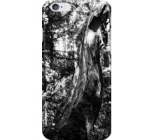 Traces of War iPhone Case/Skin