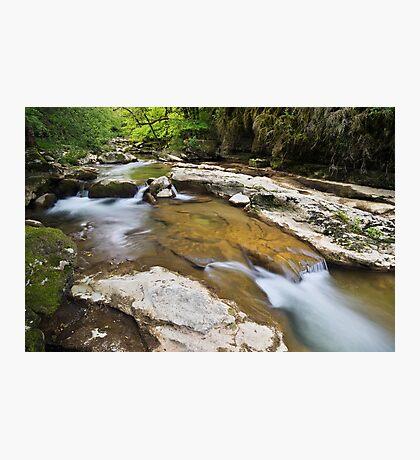 Springtime around Seran river Photographic Print